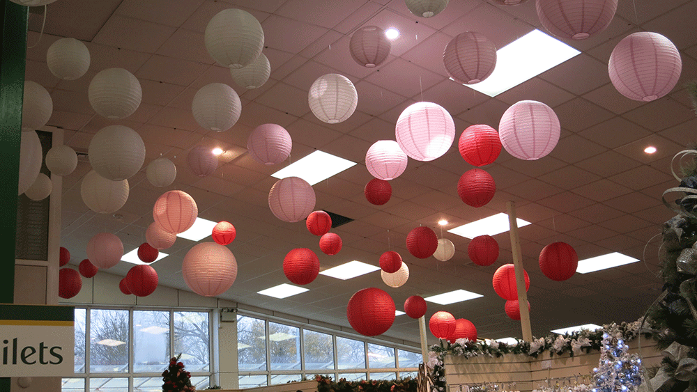 Festive Paper Lantern Decorations at Scotsdales Garden Centre