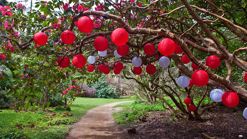 National Trust Outdoor Lanterns