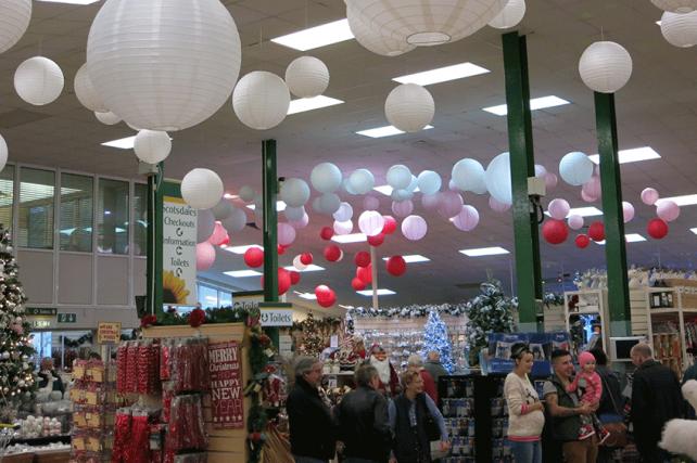 Festive Paper Lantern Decorations at Scotsdales Garden Centre