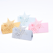 Snowflake name cards